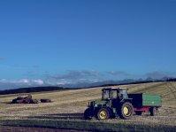 traktor, ciągnik, pole